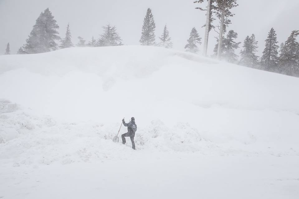 A Mammoth employee shovels beside a 30 foot snow bank.