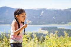 young girl blowing a dandilion