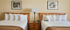 *2 Queen Bed Hotel Room - Bed 2