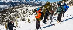 Group Backcountry Skiing