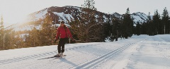 Couple cross-country skiing