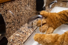 biggie the mascot washing his hands
