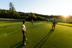 three males playing golf on a sunny day