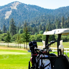 golf cart and a mountain view