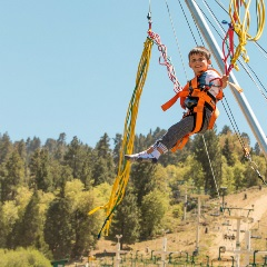 kid on the euro bungy