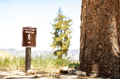 mountain top loop trail sign