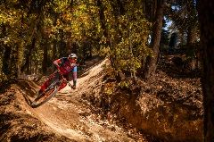 mountain biker during the fall season, autumn leaves