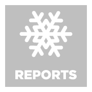 reports icon